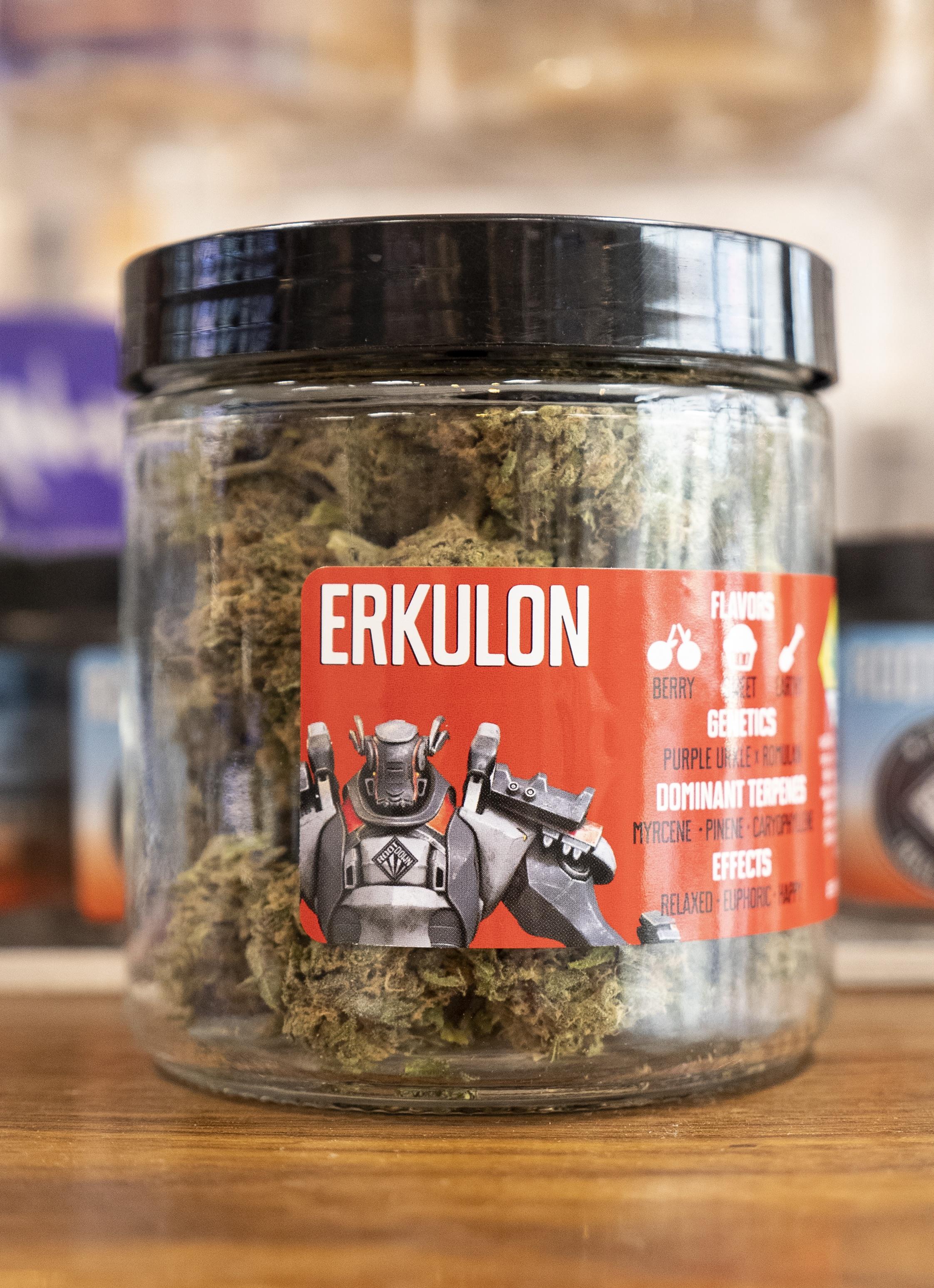 Rootdown-erkulon-spokane-cinder