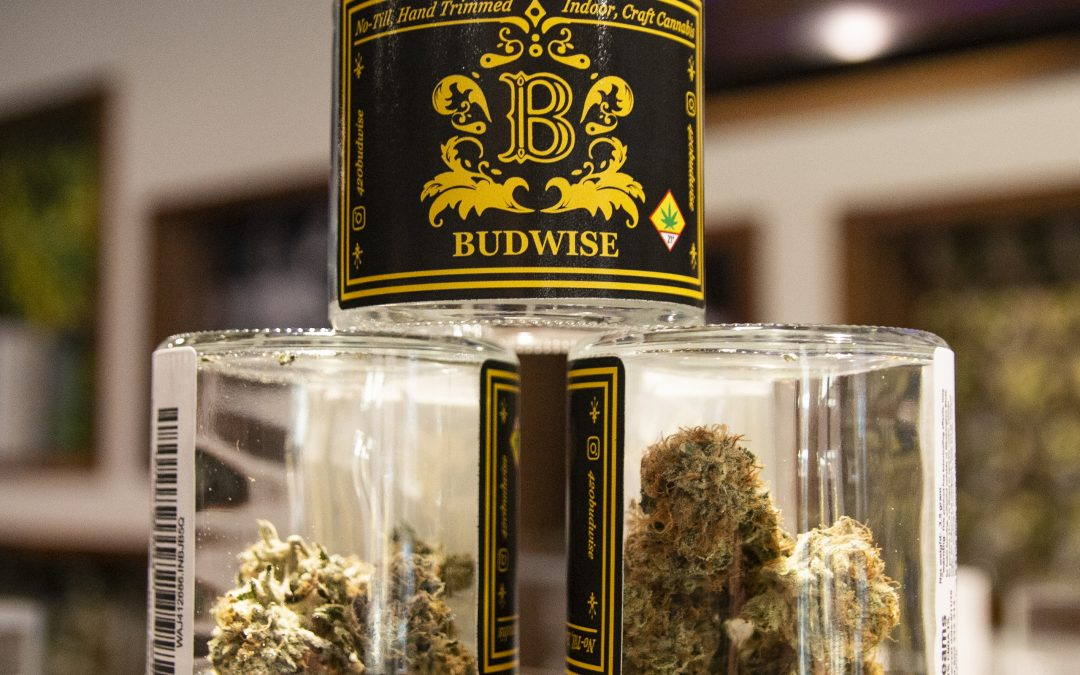 Budwise's Blueberry Cookies flower review