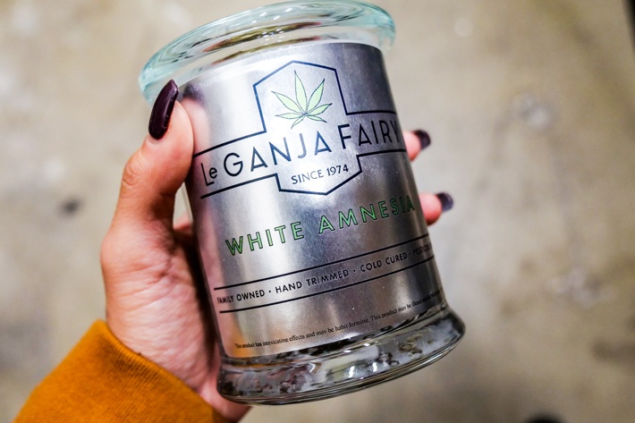 Le Ganja Fairy Spokane 14g of White Amnesia
